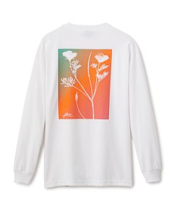 画像2: FTC POPPIES L/S TEE
